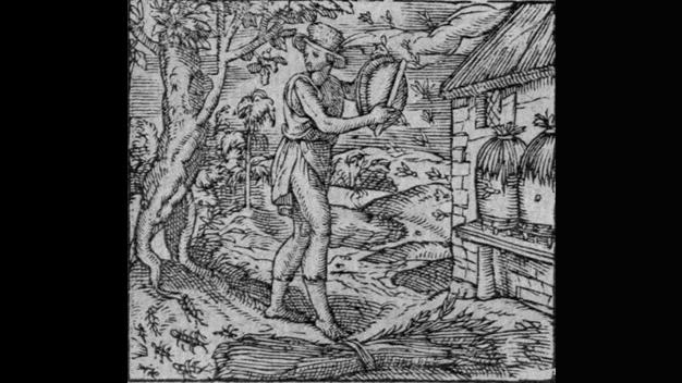 Dissertationsprojekt von Dominik Berrens (Klassische Philologie):