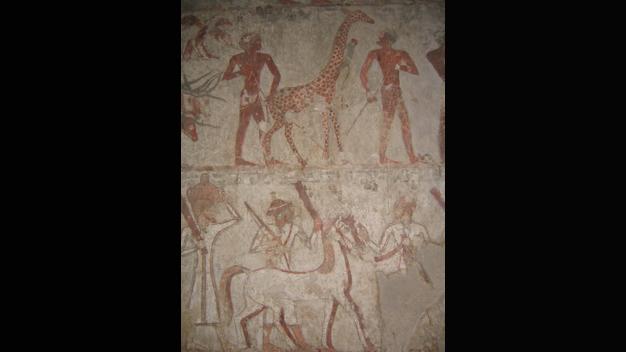 Dissertationsprojekt von Imke Fleuren (Ägyptologie):